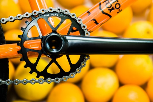 aaron_bike_check_oranges-4