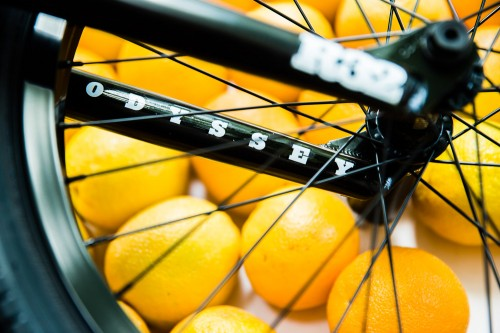 aaron_bike_check_oranges-9